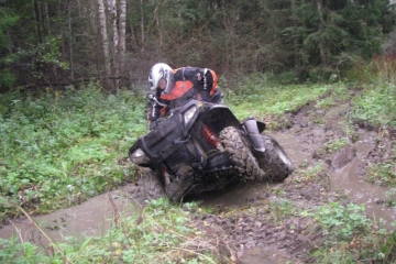 adrenaliin mudas